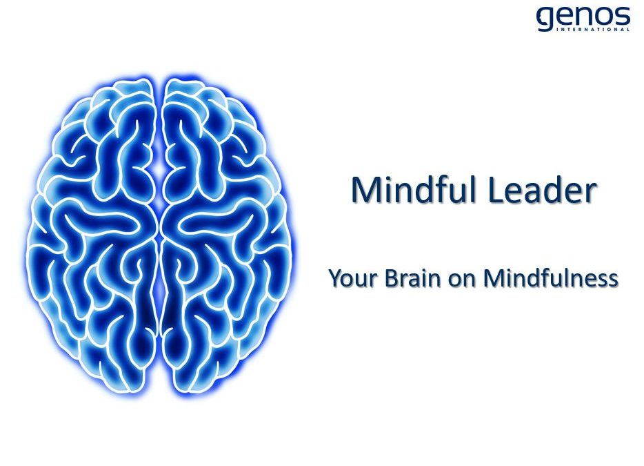 Your Brain on Mindfulness – The Neuroscience