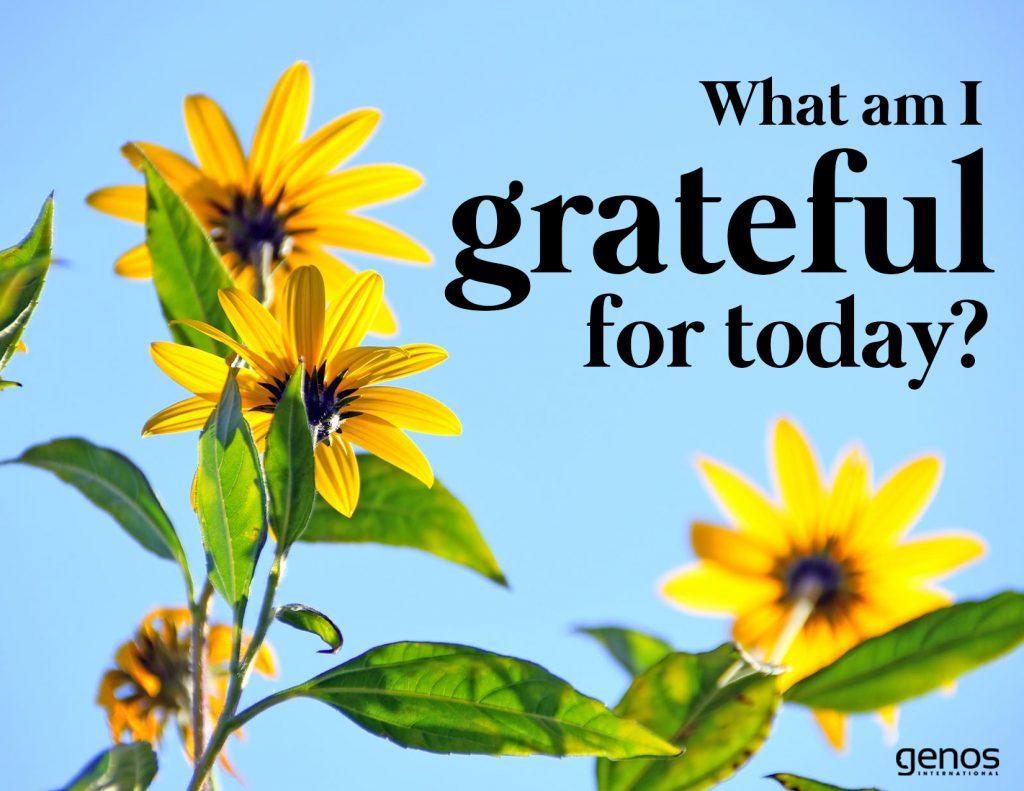 Gratitud mindfulness practices